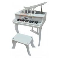 37 Tuşlu Kuyruklu Piano