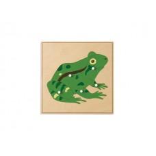 24 x 24 Kurbağa Puzzle